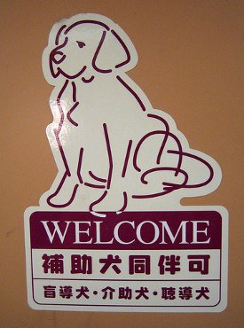 Large Dog Friendly Hotel Chains