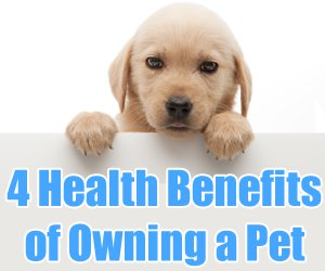benefits having pets