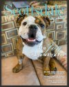 Paw Posse in North Scottsdale Lifestyle Magazine