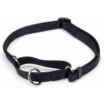 Nylon Dog Training Collar