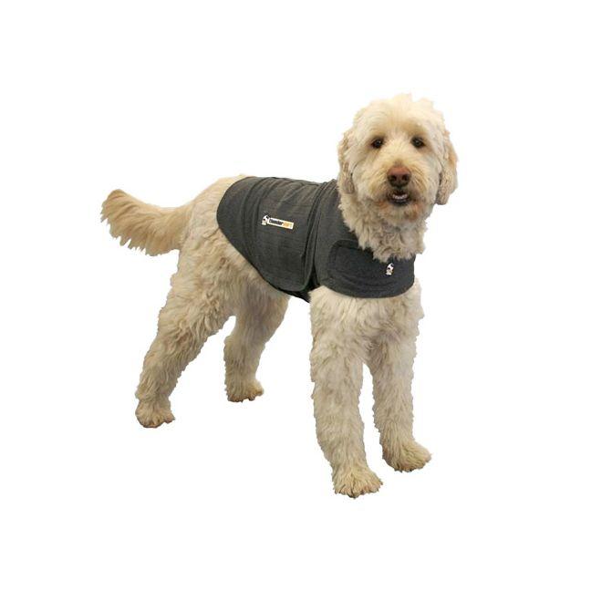 What Size Vest Should I Get For A Dog