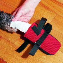 Paw Protector For Dogs