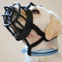 Dog Muzzles For Chewing